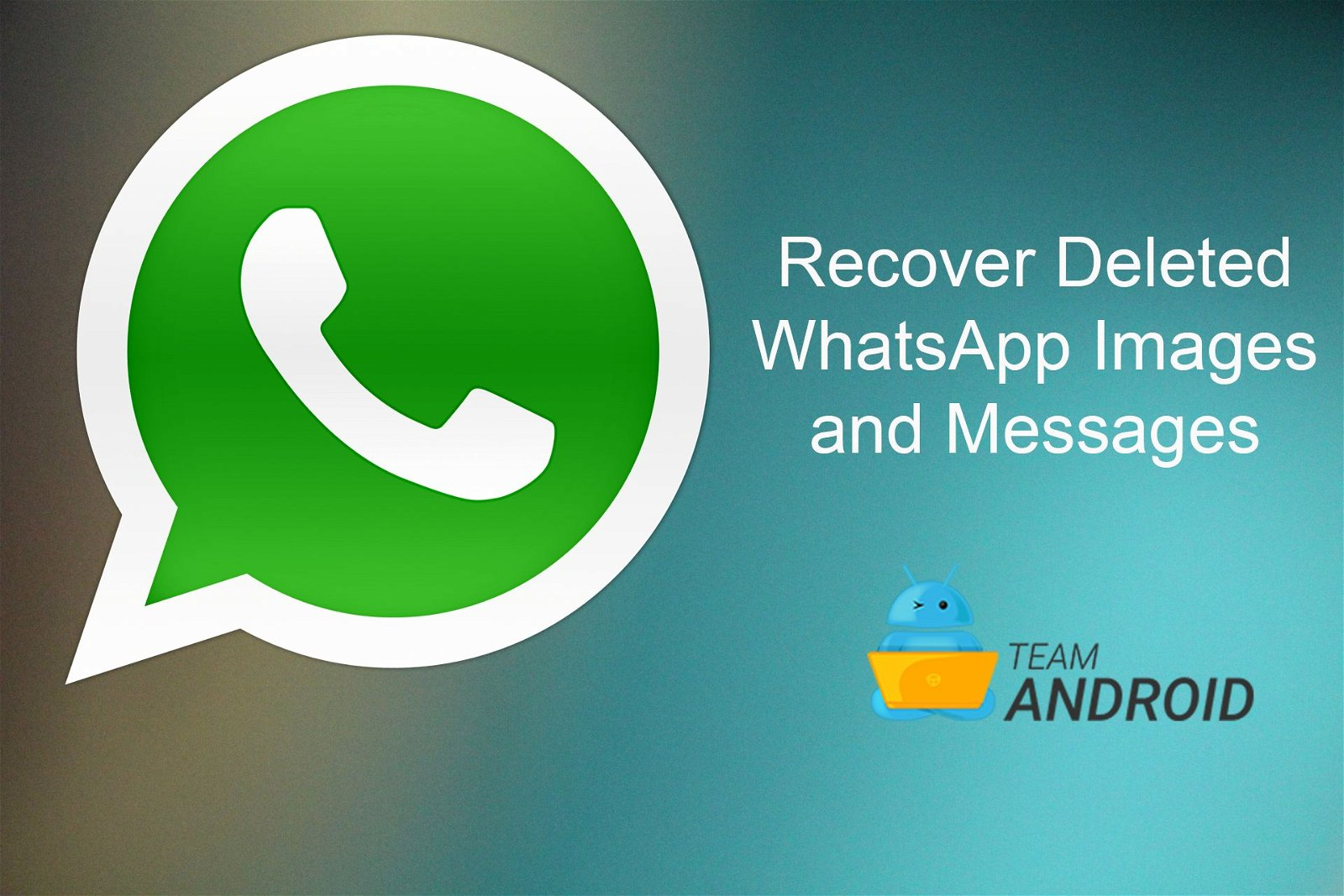 WhatsRemoved: Recover Deleted WhatsApp Images and Messages 4