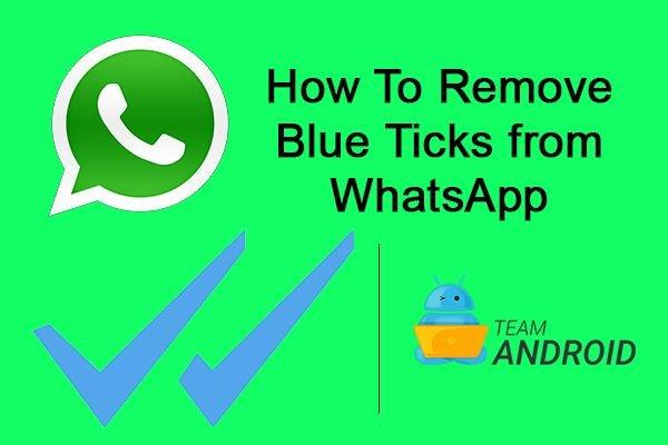 Remove Blue Ticks from WhatsApp