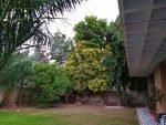 Vivo V15 Review - 32 Megapixels Pop-up Selfie Camera 13