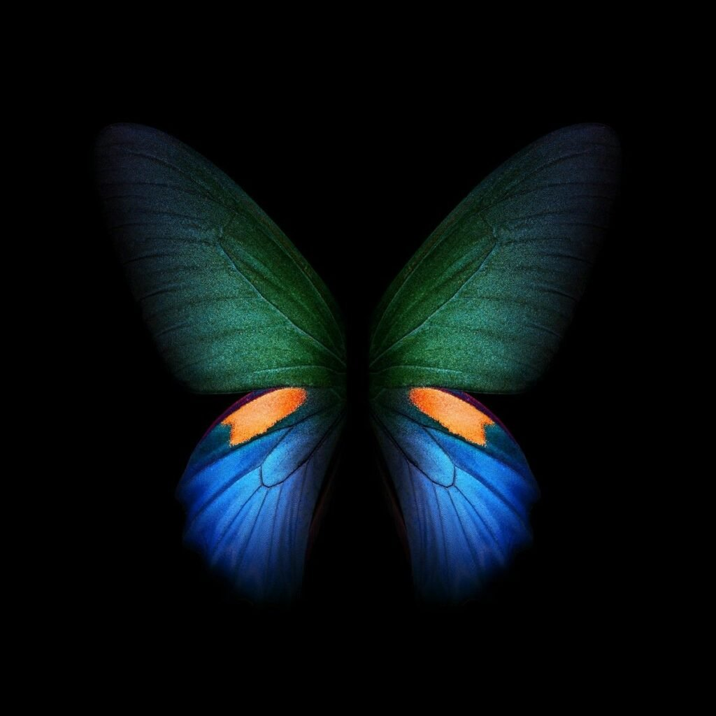 Download Samsung Galaxy Fold Official Wallpapers 14